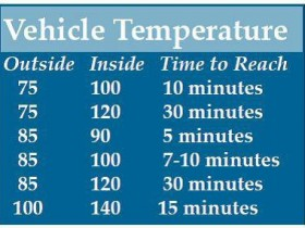 Vehicle Interior Index Chart