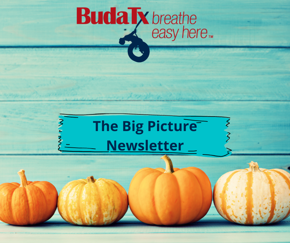 The Big Picture Newsletter (6)